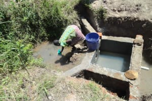 The Water Project: Kamburu Spring Catchment Project -
