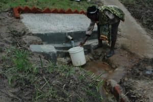 The Water Project: Sirende Spring Catchement Project -