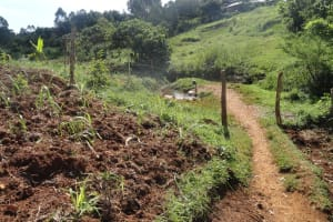 The Water Project: Sichangi Spring Catchment Project -
