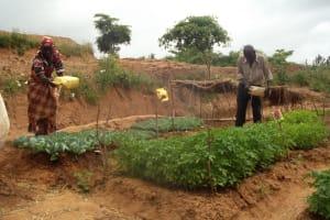 The Water Project: Kyalimba Community A -