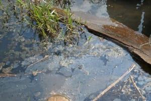 The Water Project: Kihura Tegot -