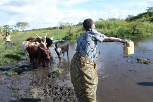 The Water Project: Nyabukoni Siriba -