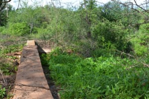 The Water Project: Wuumisyo Wa Miangeni Community -