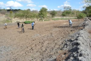The Water Project: Vinya wa Mwau Drip Irrigation Project -