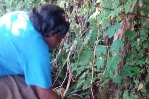 The Water Project: Ebukuya Samaria Community, Nuru Okumbe Spring -