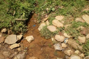 The Water Project: Shiseso Community, Laurence Induli Spring -