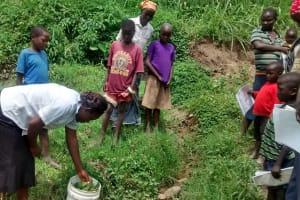The Water Project: Shibuli Community, Eshitirira Spring -