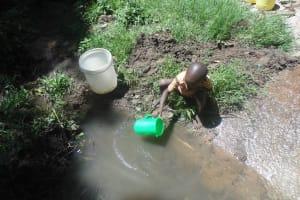 The Water Project: Ebwambwa Community, Mwibichiri Spring -