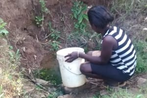 The Water Project: Evihule Community, Bartholomew Spring -