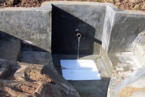The Water Project: Emmachembe Community, Saul Shivogo Spring -