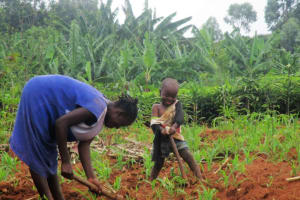 The Water Project: Simboyi Community, Imbiru Spring -