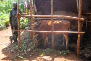 The Water Project: Givunji Community, Givunji Spring -