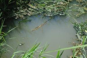 The Water Project: Kibyama-Titi Community -