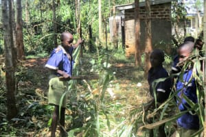 The Water Project: Emmabwi Primary School -  Students Working On School Farm