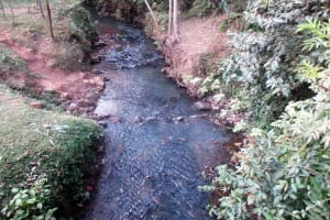 The Water Project: Bumuyange Secondary School -  Wamu Stream Water Source
