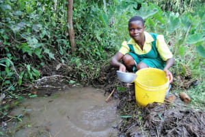 The Water Project: Mahanga Primary School -  Isaiah Magumba Spring