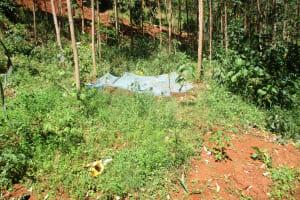 The Water Project: Kidinye Community, Wamwaka Spring -  Landscape