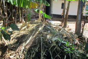 The Water Project: Kidinye Community, Wamwaka Spring -  Cow Dung For Farm