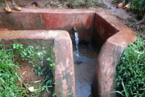 The Water Project: Emurembe Primary School -  Wamianda Spring