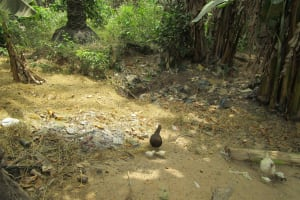 The Water Project: Mapeh Community -  Rubbish Pit