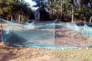 The Water Project: Bumavi Community, Shoso Mwoga Spring -  Mosquito Nets