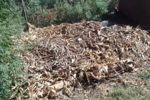 The Water Project: Eluhobe Community, Amadi Spring -  Compost Pile