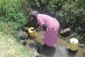 The Water Project: Eshiakhulo Community, Omar Sakwa Spring -  Woman Drawing Water At Omar Sakwa Spring