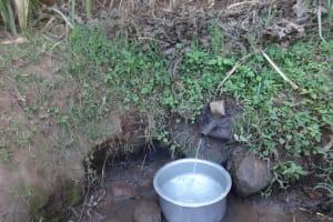 The Water Project: Murumba Community, Muyokani Spring -  Muyokani Spring