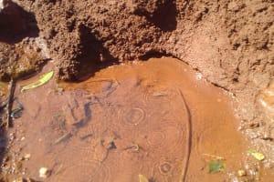 The Water Project: Wanzuma Community, Wanzuma Spring -  Wanzuma Spring