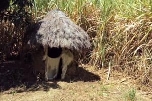 The Water Project: Eshiakhulo Community, Omar Sakwa Spring -  Latrine