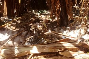 The Water Project: Shitoto Community, Abraham Spring -  Compost Pit