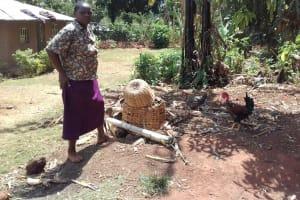 The Water Project: Wanzuma Community, Wanzuma Spring -  Feeding Chickens