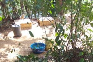 The Water Project: Murumba Community, Muyokani Spring -  Chickens Rest In Shade