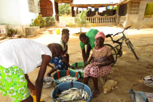 The Water Project: Tholmosor Community -  Fish