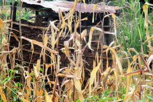 The Water Project: Mutambi Community, Kivumbi Spring -  Latrine