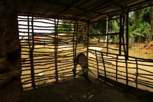 The Water Project: Malokoh Community, #4 Mabesseneh Road -  Animal Pen