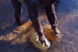 The Water Project: Shitaho Community, Mwikholo Spring -  Mwikholo Spring