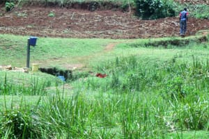 The Water Project: Mahanga Community -  Spring Environment