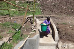The Water Project: Shitungu Community, Suleiman Spring -  Protected Spring