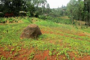 The Water Project: Mutambi Community, Kivumbi Spring -  Community Landscape