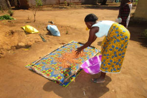 The Water Project: Victory Evangelical Church -  Drying Grandnut