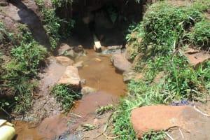 The Water Project: Mahanga Community -  Omollo Spring
