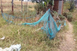 The Water Project: Eshiakhulo Community, Omar Sakwa Spring -  Kitchen Garden With Mosquito Net Fence