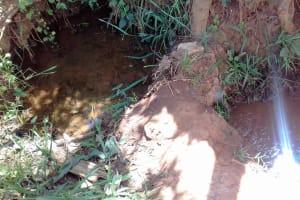 The Water Project: Igogwa Community -  Igunza Spring