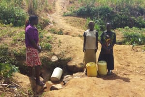 The Water Project: Futsi Fuvili Community, Futsi Fuvili Spring -  Women At Futsi Fuvili Spring