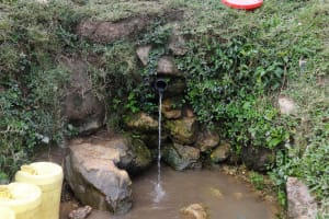 The Water Project: Shitungu Community B, Charles Amala Spring -  Charles Amala Spring