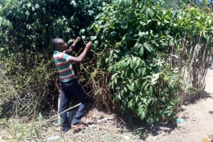 The Water Project: Handidi Community, Malezi Spring -  Alex Pruning A Fruit Tree