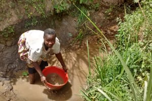 The Water Project: Ebung'ayo Community, Wycliffe Spring -  Woman Draining Stagnant Water