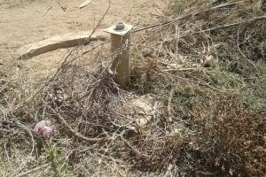 The Water Project: Bishop Sulumeti Girls Secondary School -  Broken Well