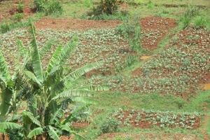 The Water Project: Shikhuyu Community -  Community Landscape